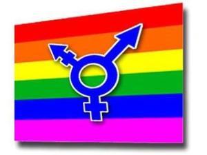 Transgender-Flag-9851062_177422_ver1_0_320_240